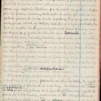 [Carnet n°11] | Shelfnum : JMG-AI-11 | Page : 101 | Content : facsimile