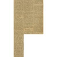 La literatura indígena paraguaya | Shelfnum : JMG-AA1-1925-00-00b | Content : facsimile
